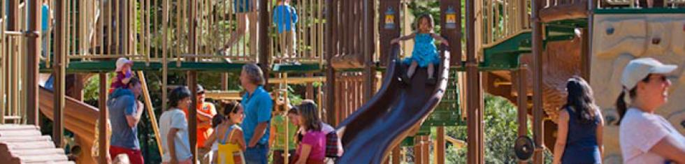 Friends of the park, kids playing on play stucture
